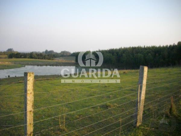 Sítio de 2 dormitórios à venda em Morada Gaúcha, Gravataí - RS
