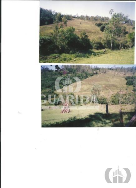 Sítio de 2 dormitórios à venda em Centro, Taquara - RS