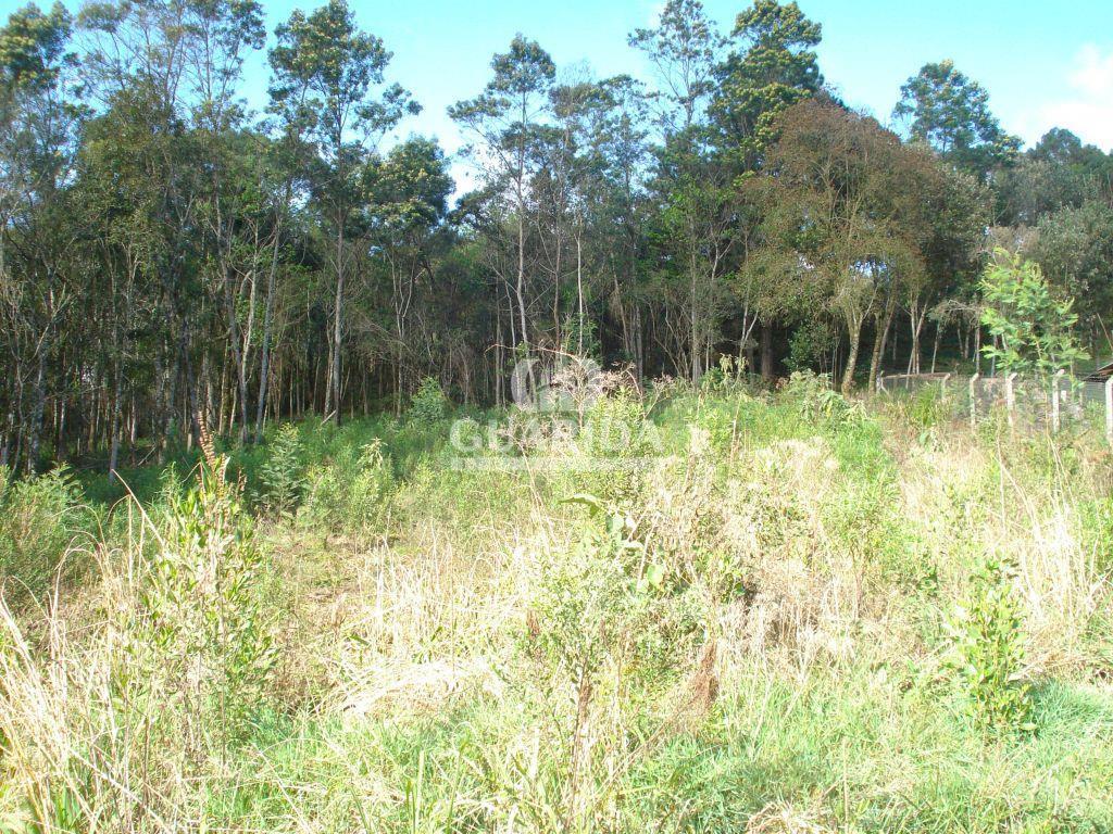 Terreno à venda em Vale Dos Pinheiros, Gramado - RS